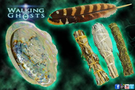 Smudging Set, Sage Mugwort Cedar & Abalone Shell & Feather Paranormal Cleansing